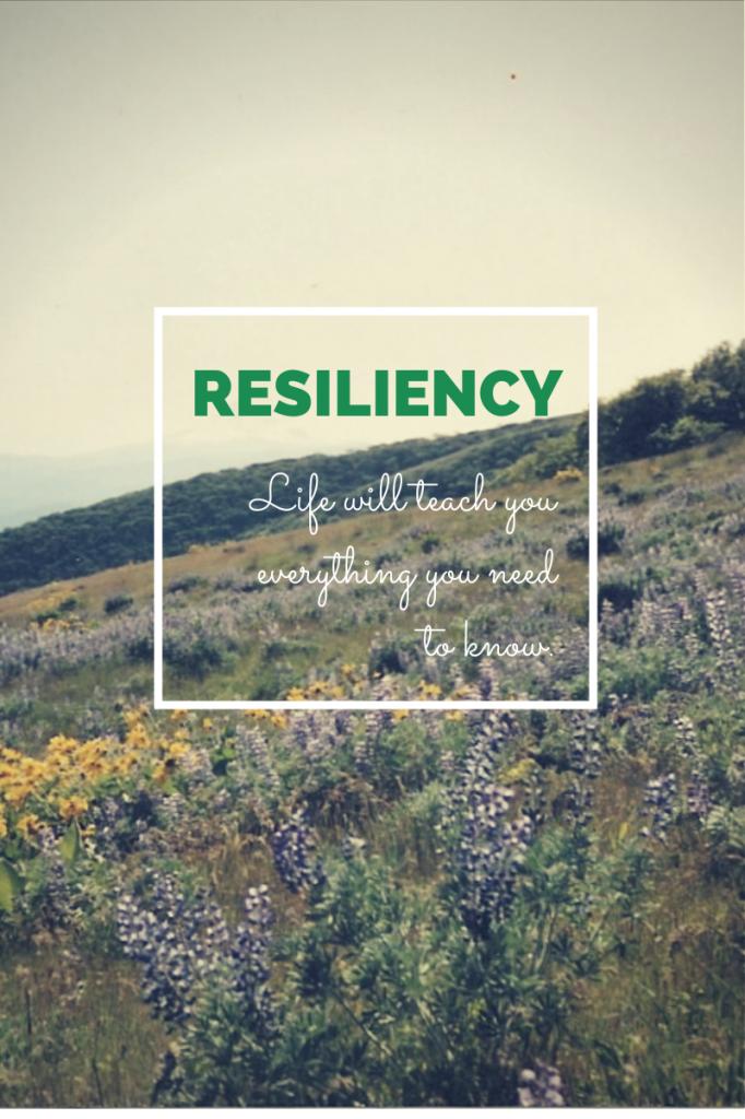 Resiliency(1)